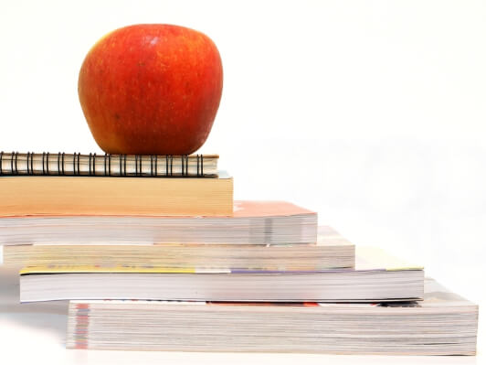stock-photo-apple-and-pencil-sitting-on-top-of-stack-of-books-isolated-on-white-background-387849049